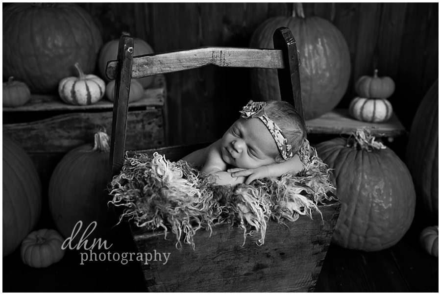 Newborn Photography Virginia Beach